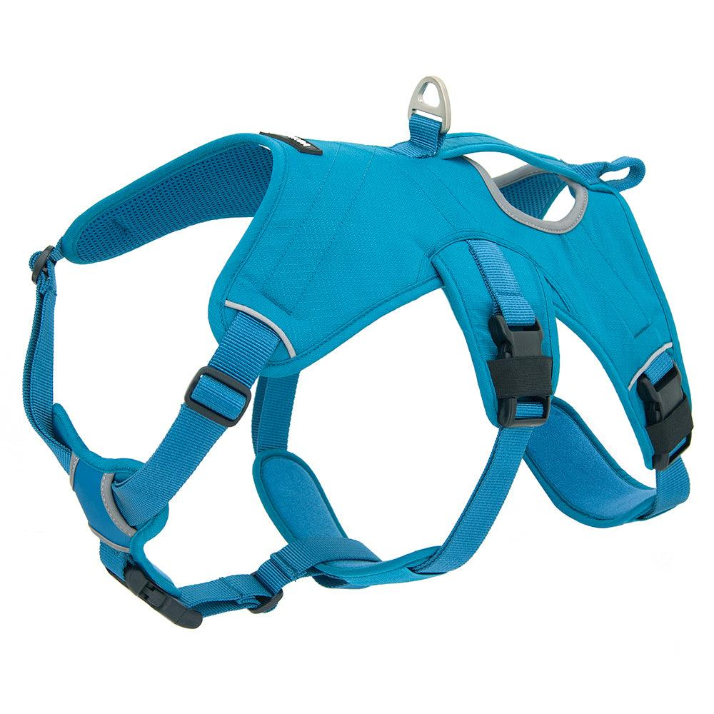 VOYAGER Control Dog Harness in Turquoise - Expanded
