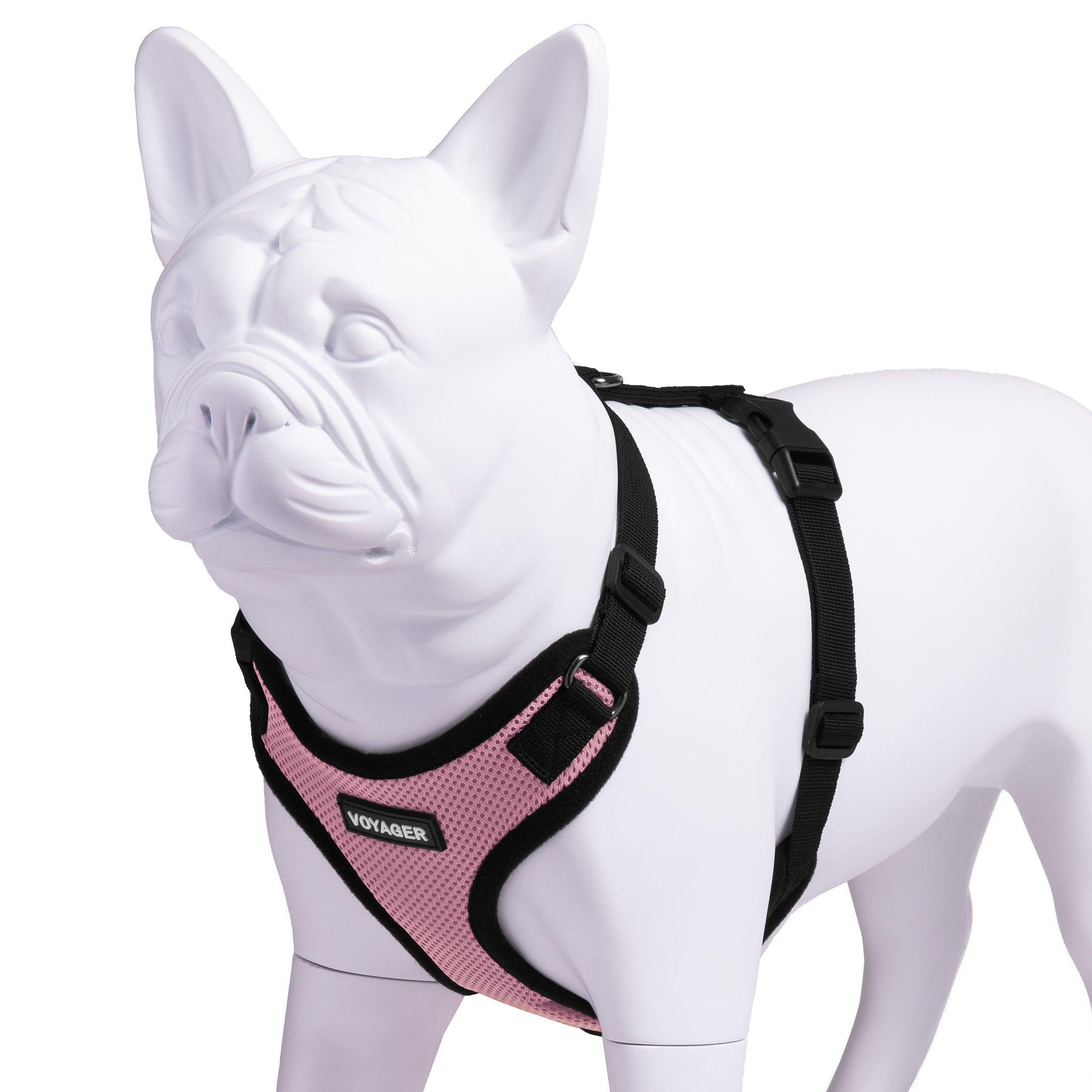 VOYAGER Step-In Lock Dog Harness in Pink with Black Trim and Webbing - Expanded