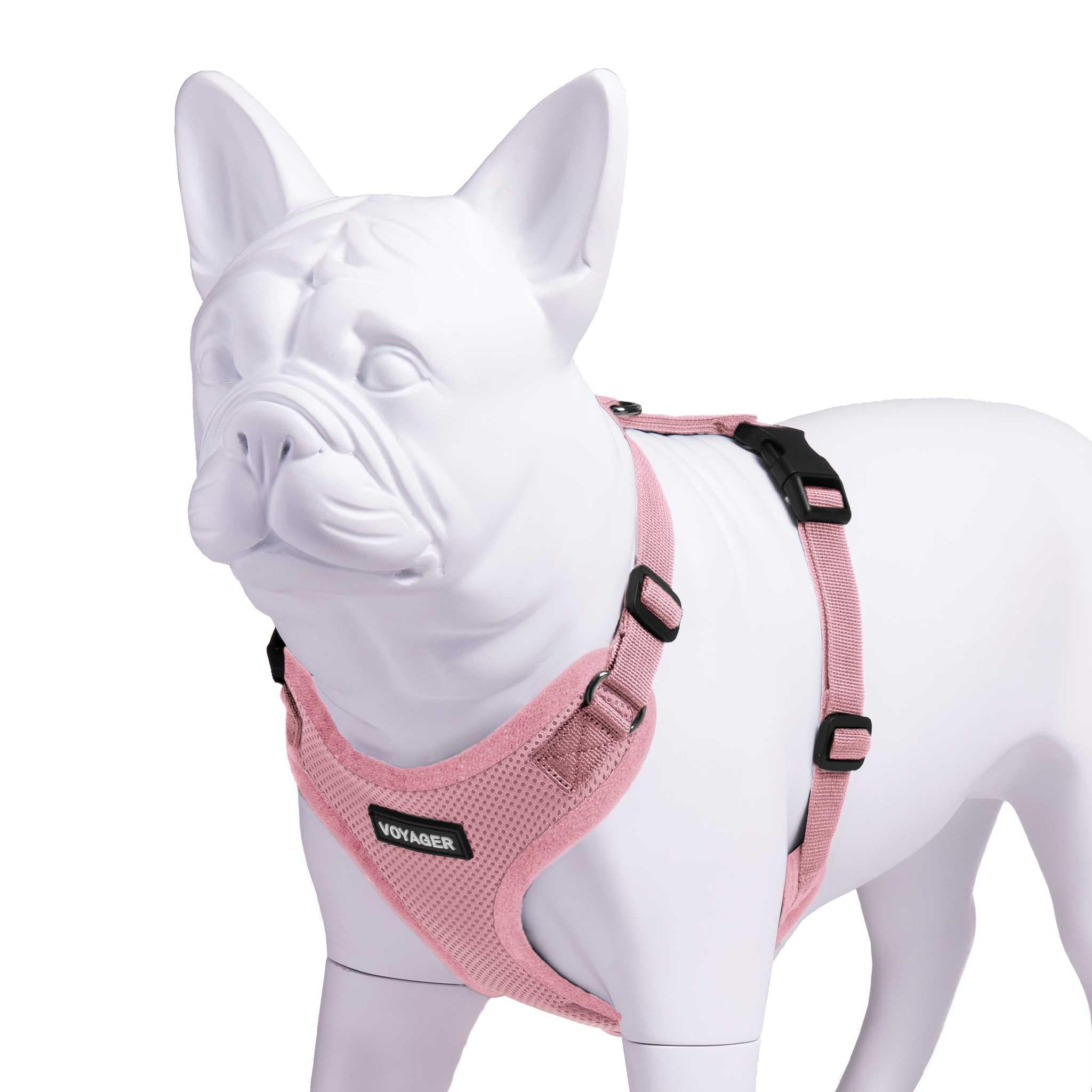 Step-In Lock Dog Harness