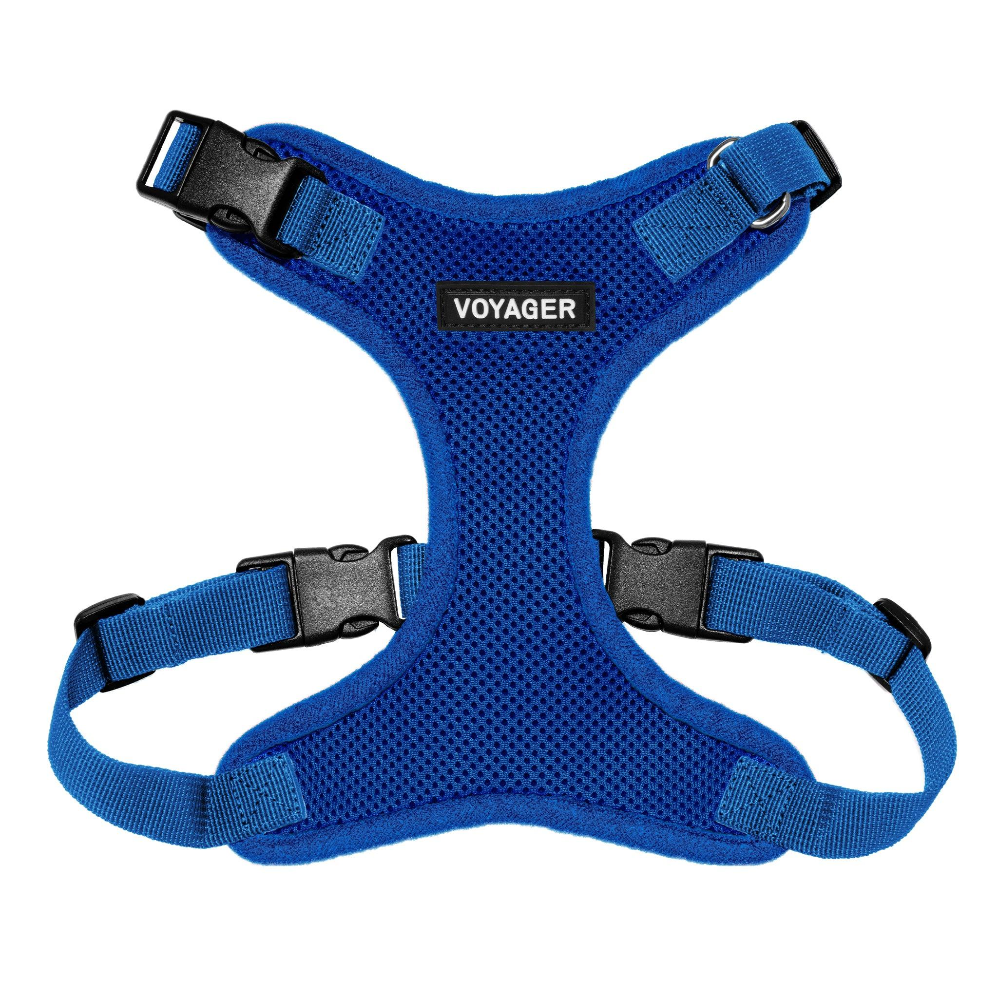 VOYAGER Step-In Lock Dog Harness in Royal Blue with Matching Trim and Webbing - Front