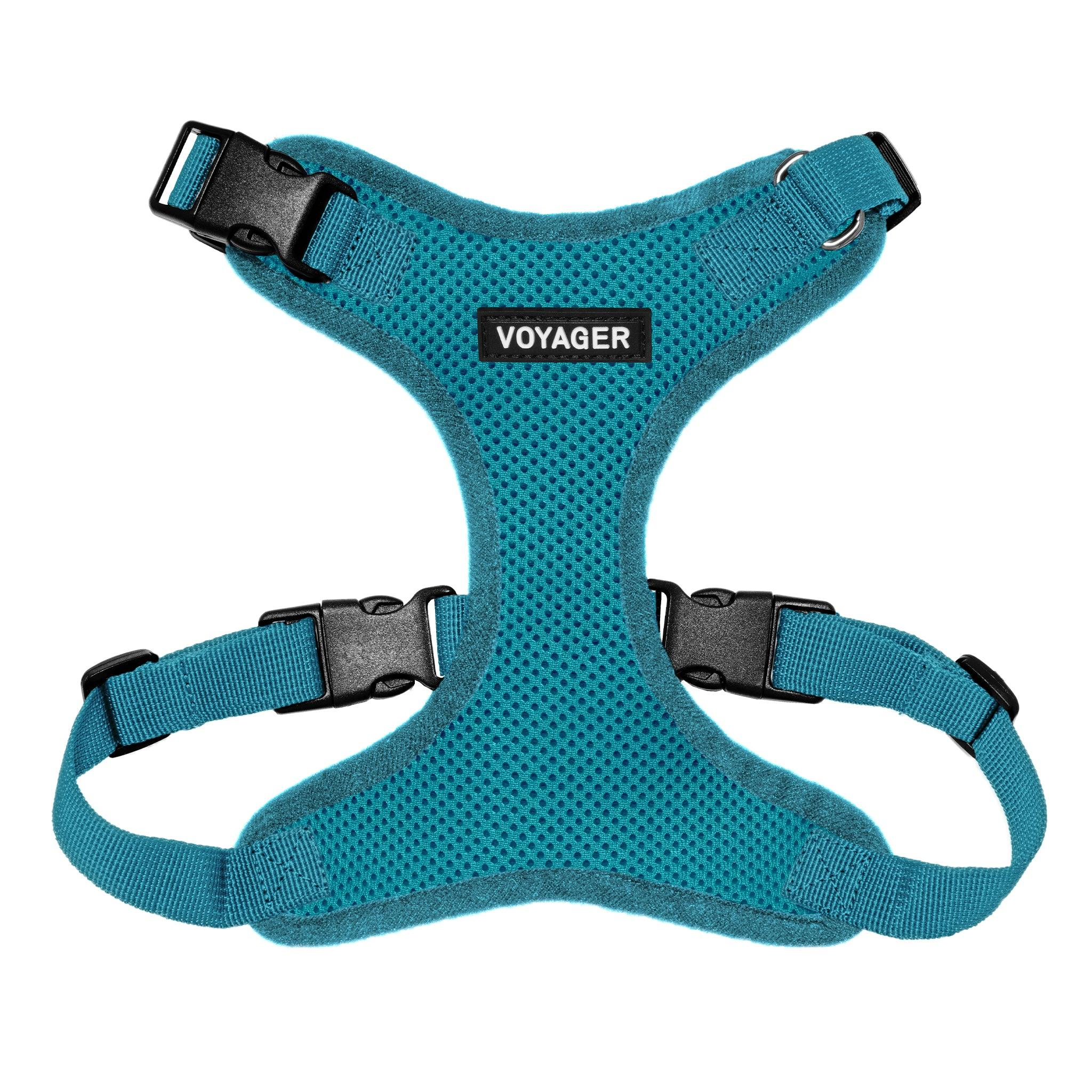 VOYAGER Step-In Lock Dog Harness in Turquoise with Matching Trim and Webbing - Front