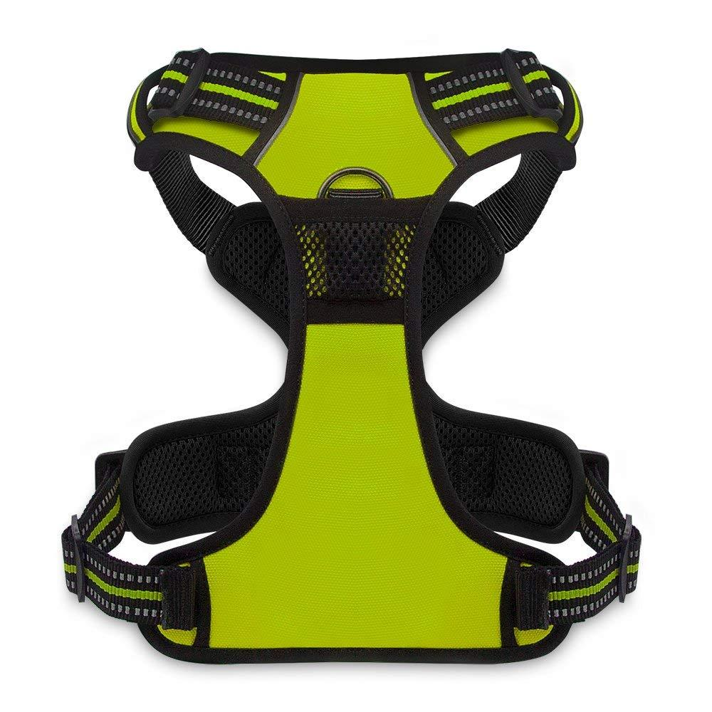 VOYAGER Dual-Attachment Dog Harness in Lime Green - Back