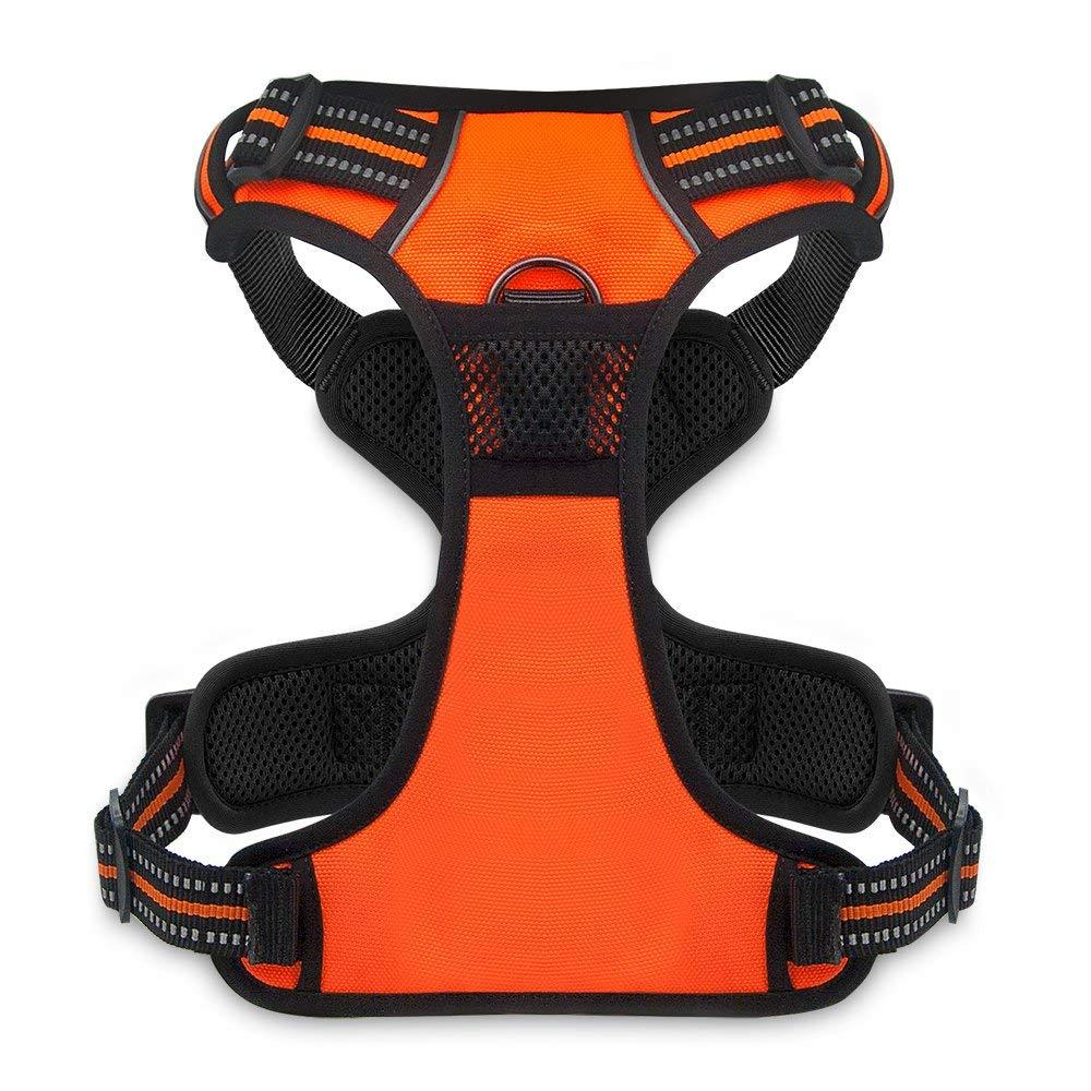 VOYAGER Dual-Attachment Dog Harness in Orange - Back