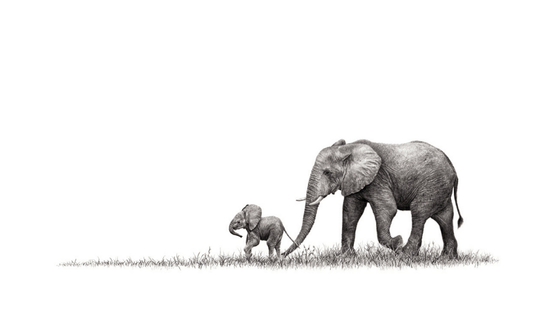 African Elephants, Mother And Baby - On Canvas