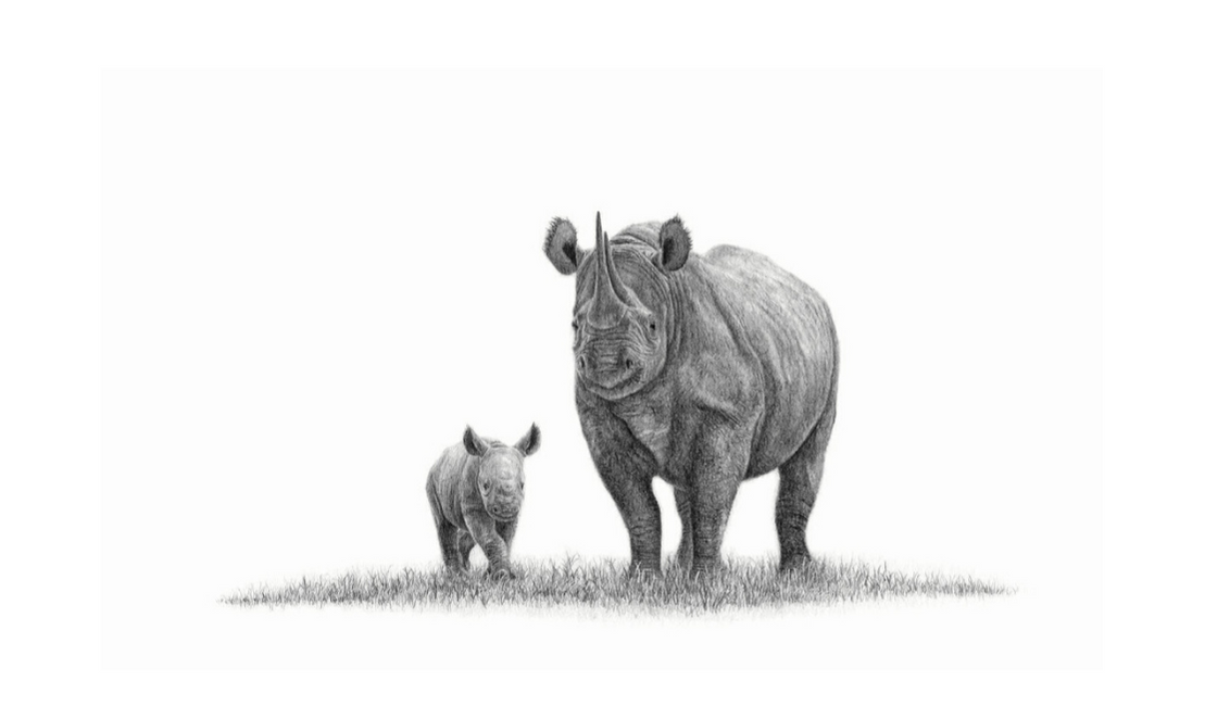 African Black Rhinos - On Canvas