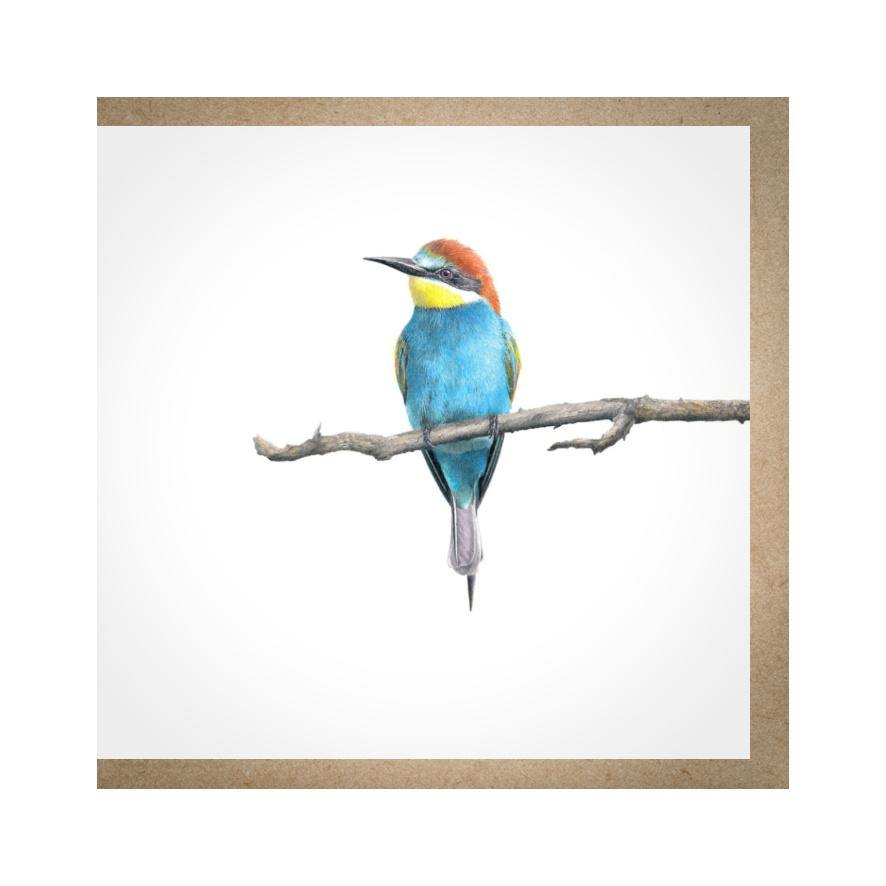 European Bee Eater 2 - Gift Card