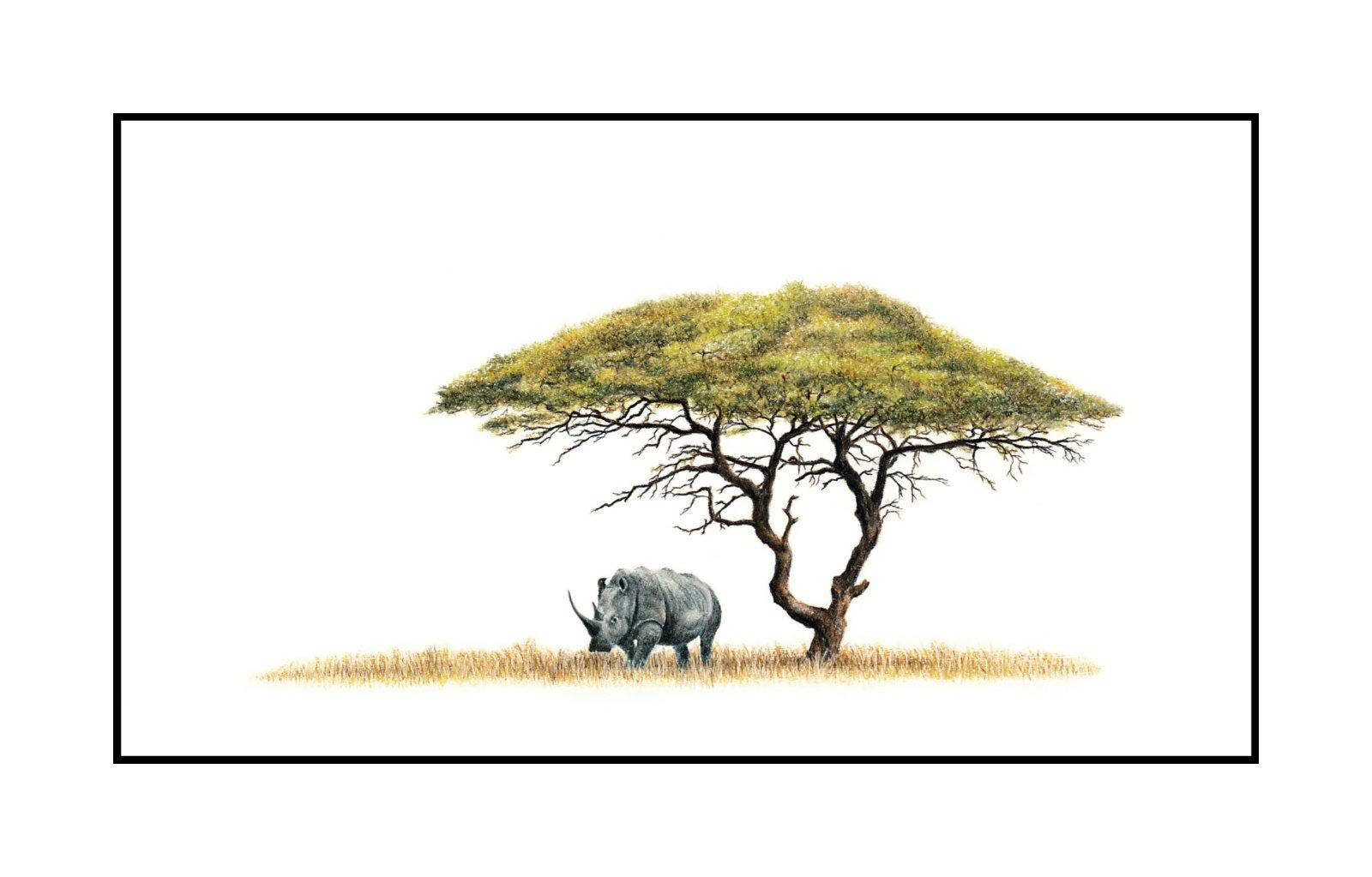 White Rhino Under Acacia Tree (AT1)