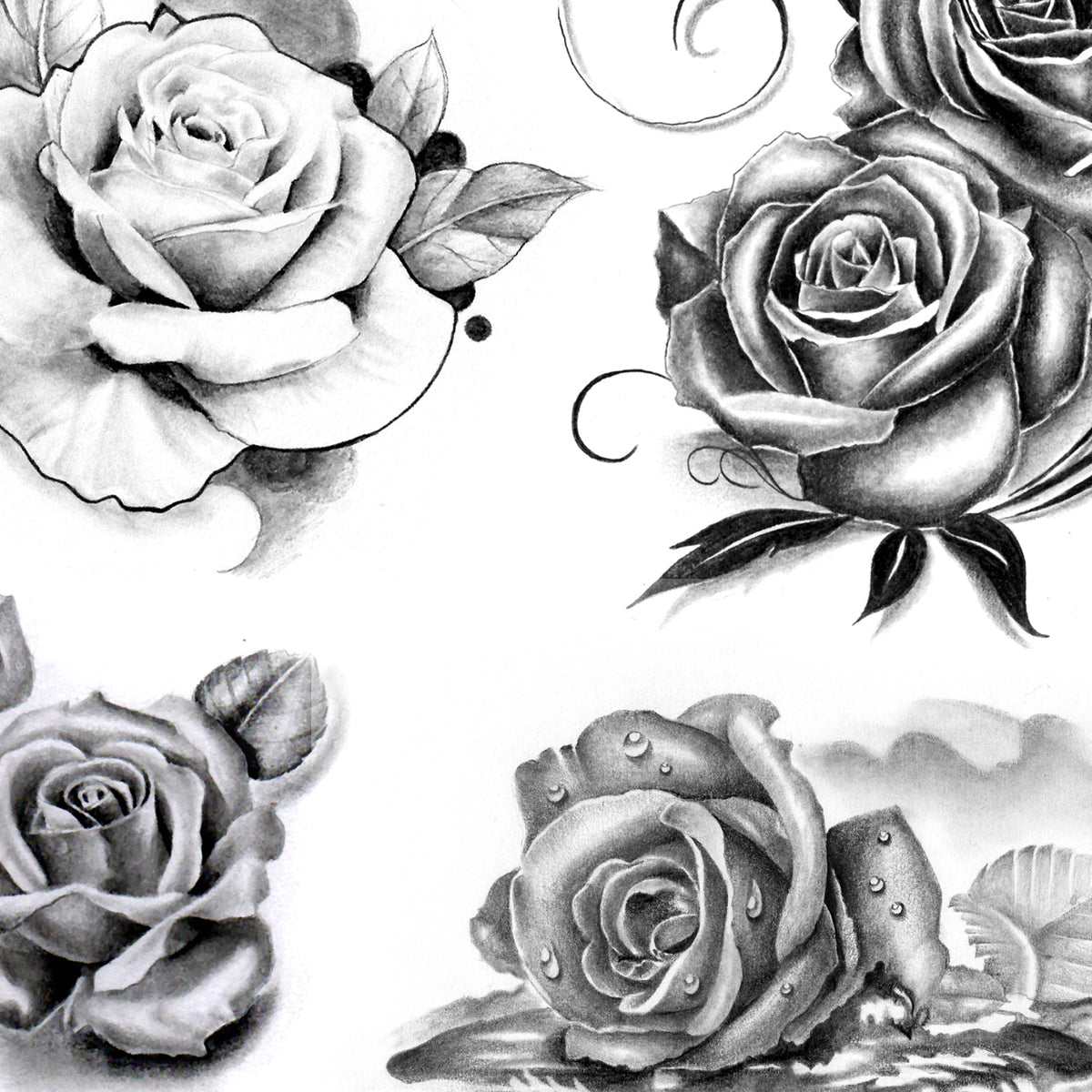 Black And Grey Tattoo Stencil: 5 Roses Of Tattoo Designs In Black And Grey Style