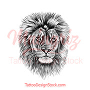Realistic lion - tattoo design download #9
