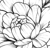 Sexy peony linework half sleeve high resolution download