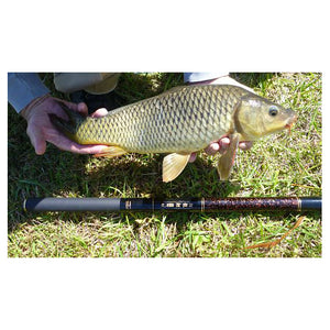 Carp caught with Nissin Flying Dragon Carp Rod 530