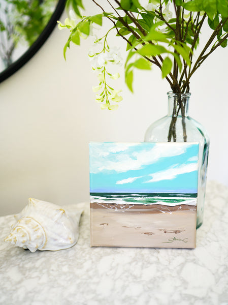 Beach Scenery Mini