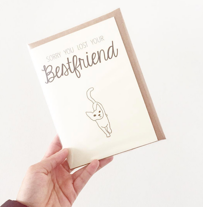 -60% Greeting Card Sorry (Gato)