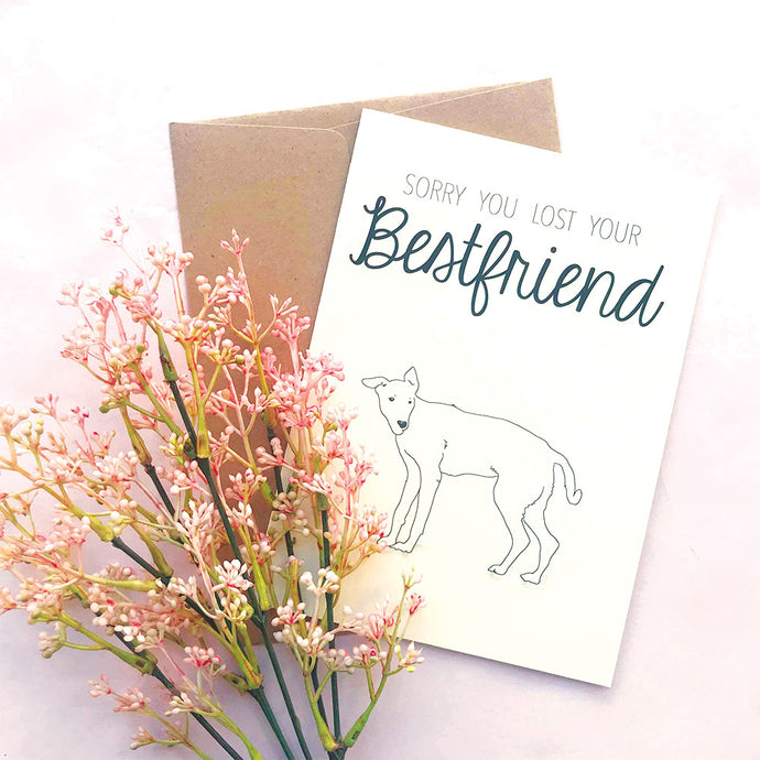 -50% Greeting Card Sorry (Lomito)
