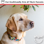 Clancy the Black Cockatoo Dog Collar by Anipal
