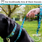 Kylo the Koala Dog Leash by Anipal - Microchips Australia