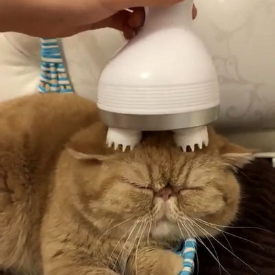 Cat/Dog Rechargeable Head Massager w/ Rotating Electric Claw