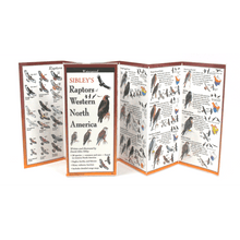 Load image into Gallery viewer, Sibley - Raptors of Western North America - Folding Guide
