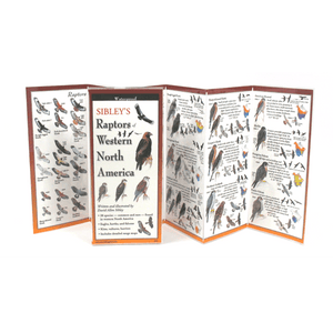 Sibley - Raptors of Western North America - Folding Guide
