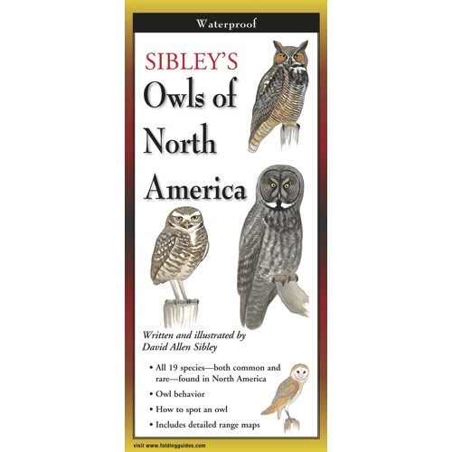 Sibley - Owls of North America - Folding Guide