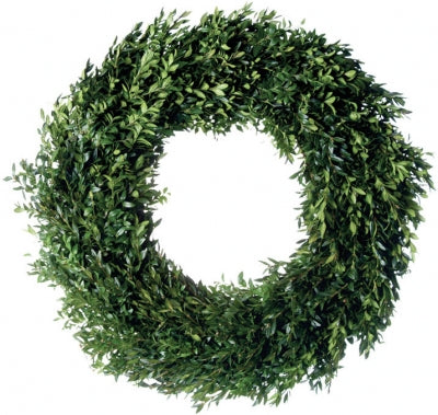 Boxwood Wreath, Undecorated