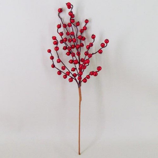 Winterberry Stems