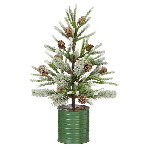 Potted Pine Cone Tree