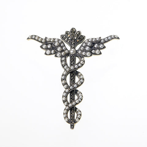 Medical Caduceus Pin