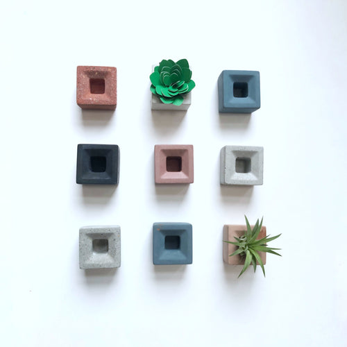 Magnetic concrete air plant holder