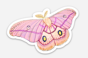 Emperor Moth Sticker