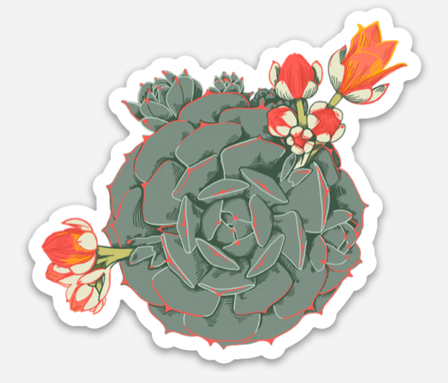 Echeveria Sticker