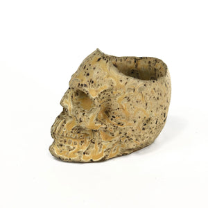 Human Skull Succulent Planters - Handmade Ceramics from Ice + Dust Pottery
