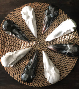 Raven Skull Home Accents - Handmade Ceramics from Ice + Dust Pottery