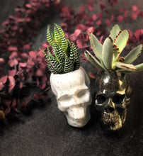 Load image into Gallery viewer, Human Skull Succulent Planters - Handmade Ceramics from Ice + Dust Pottery