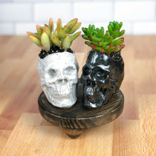 Load image into Gallery viewer, Human Skull Succulent Planters