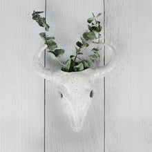 Load image into Gallery viewer, Longhorn Bull Skull Wall Planter - Handmade Ceramics from Ice + Dust Pottery
