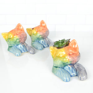 Love is Lovecats Succulent Planters - Handmade Ceramics from Ice + Dust Pottery