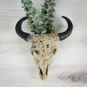 Longhorn Bull Skull Wall Planter - Handmade Ceramics from Ice + Dust Pottery