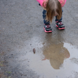Learning with Nature - Puddles
