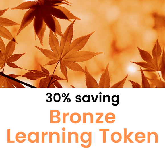 30% Saving - Bronze Learning Token