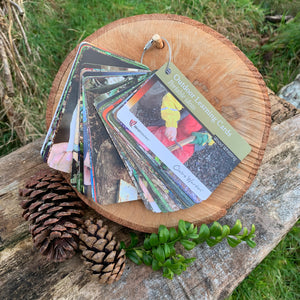 Outdoor Learning Cards: Wood Whittling