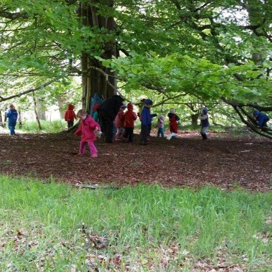 Forest School Leader ITC Level 3 Award - HYBRID COURSE