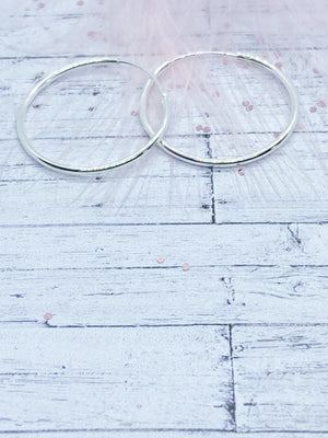 Sterling Silver hoop earrings | Eve and Flamingo