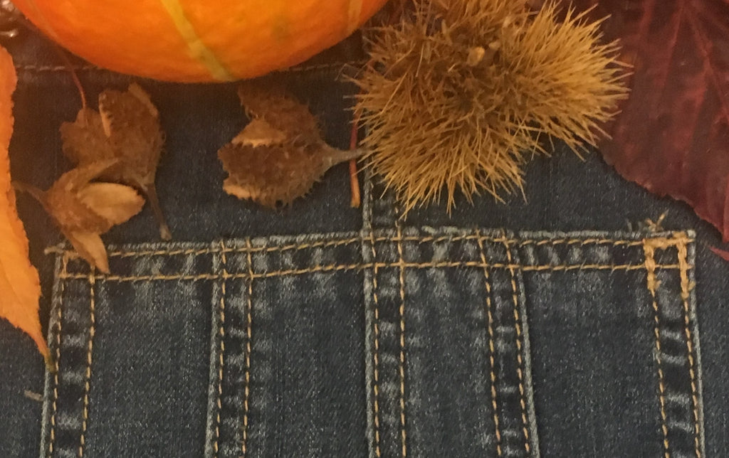 Denim bib pocket surrounded by autumnal  props, pumpkin, and beech nuts.