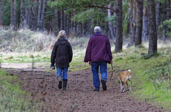 Couple walking their dog in winter woodland.