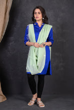 Load image into Gallery viewer, DUPATTA303