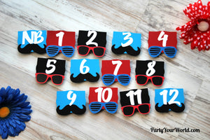 One Cool Dude First Birthday Photo Clips, 12 Month Picture Banner