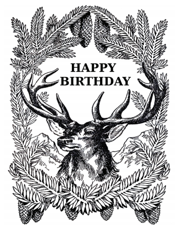 Vintage Art Buck Birthday Card