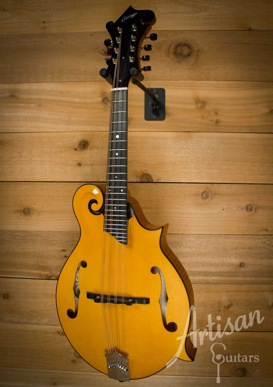 Collings MF Mandolin Honey Amber Gloss Top with Tortoise Binding ID-10225