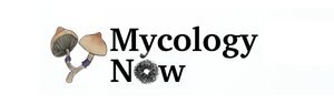 Mycology Now